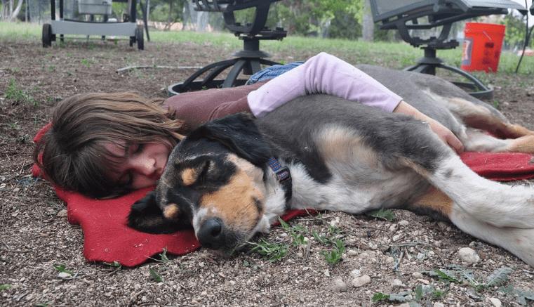 Cómo elegir el mejor seguro de mascotas: ¡considera su cobertura!